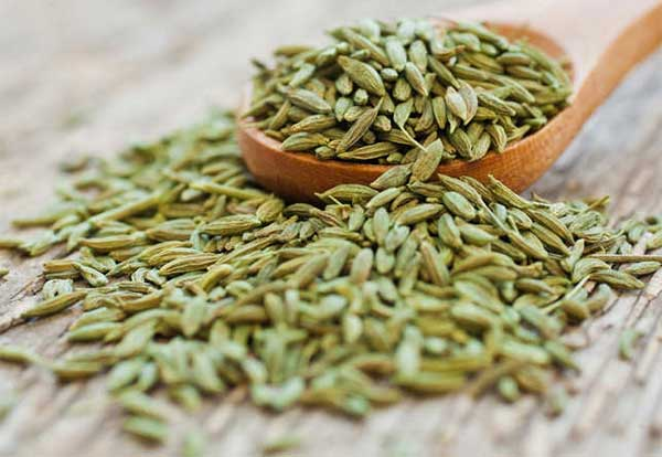 fennel seeds for bulmia nervosa