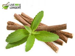 licorice herb for dengue