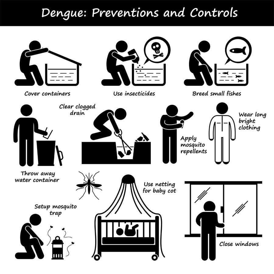 prevention tips for dengue