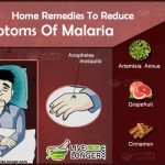 Home remedies to reduce symptoms of malaria