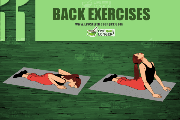 back exercises for preventing back pain