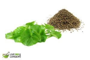 organic herbs for diarrhea