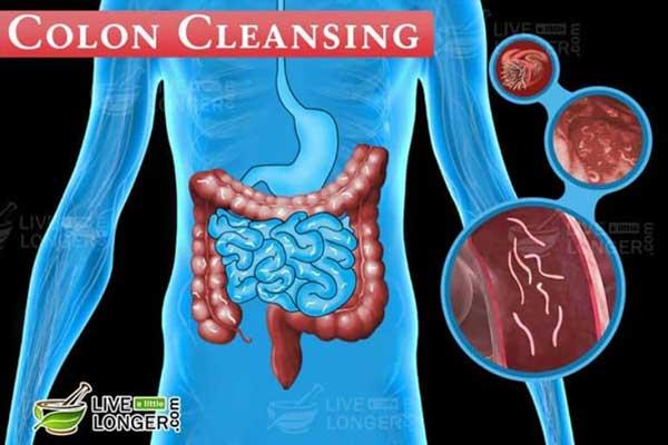 Natural colon cleanse Diet Plan For Complete Detox