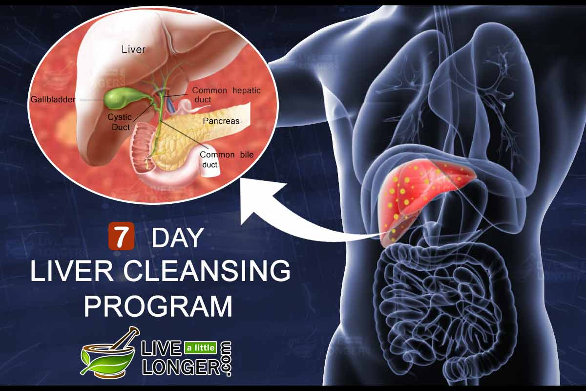 7 day liver cleansing program