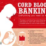 Cord Blood Banking – Everything you need to know