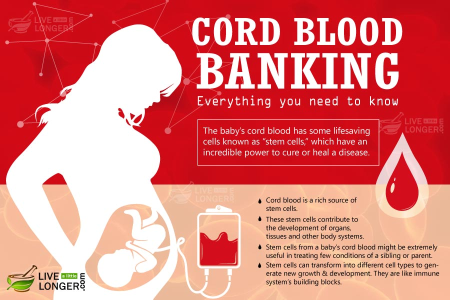 Cord Blood Banking Cost >> Cord Blood Banking - Everything you need to know