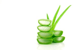 Aloe Vera skin and health benefits