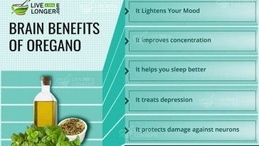 Brain Benefits Of Oregano
