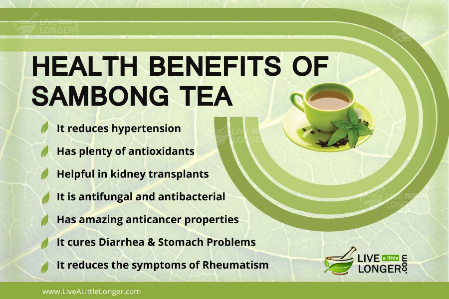 Health Benefits Of Sambong Tea