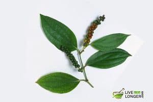 home remedies for sinus infection&quot; width=&quot;300&quot; height=&quot;200&quot;  /&gt;Black pepper belongs to the family of <em>Piperaceae.</em>It is widely used for cooking and for making natural medicines. Native to Kerala (a southern state in India), the use of black pepper dates back to ancient times. In fact, it was greatly traded in those days. It is available throughout the year and has multiple benefits. It has anti-inflammatory, antibacterial properties and is a great source of vitamin K, vitamin C, potassium, iron, dietary fibers, and manganese. Black pepper is well admired in treating diarrhea, heart disorders, anemia, pyorrhea, indigestion, jaundice, muscular strains, impotence, cough, cold, constipation, respiratory problems, and so on. This is one of the most popular home remedies for sinus infection in Asian countries. To try this remedy, follow the steps given below:</p><ul style=