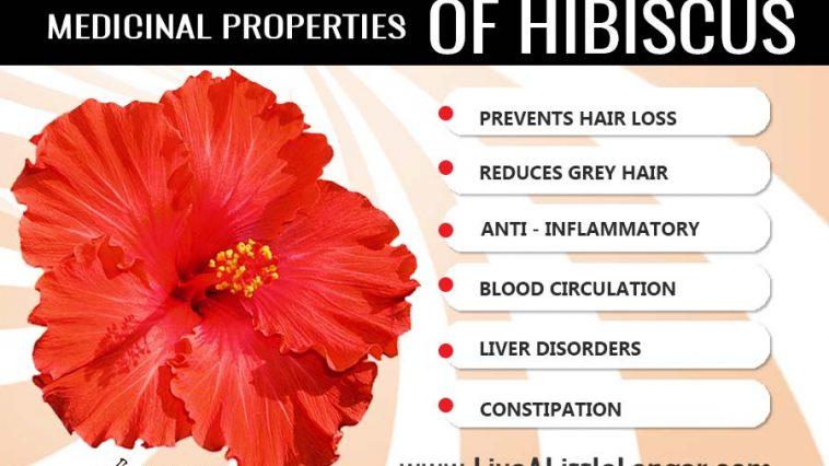 Health benefits of hibiscus