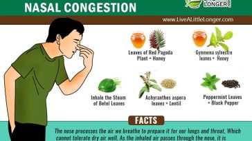 Herbal remedies for cough and phlegm