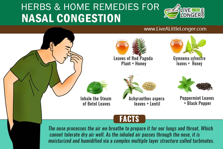Home Remedies Natural Nasal Decongestant
