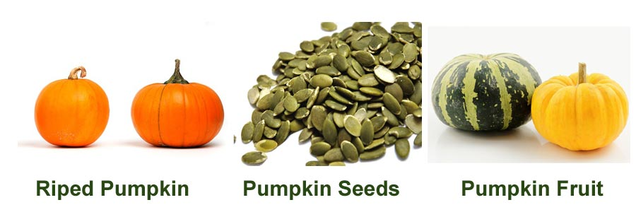 pumpkin seeds dogs toxic