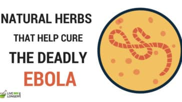 home remedies for ebola virus
