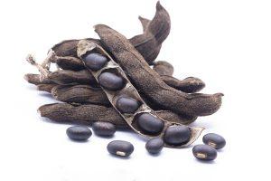herbs for libido enhancement