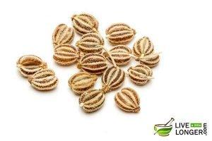 Use Carom Seeds