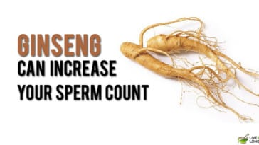 Can ginseng incresase sperm