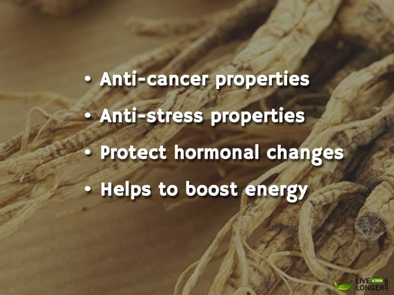 Benefits of ginseng-1