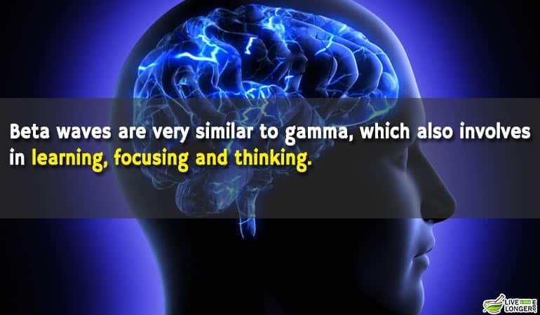 types of brain waves-2