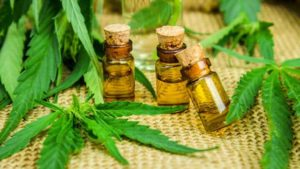 Health Benefit Of Cannabis Oils