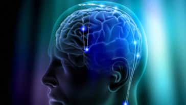 Top 5 Ways to Improve Brain Power Naturally