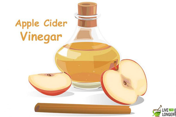 apple cider vinegar for flea treatment for dogs