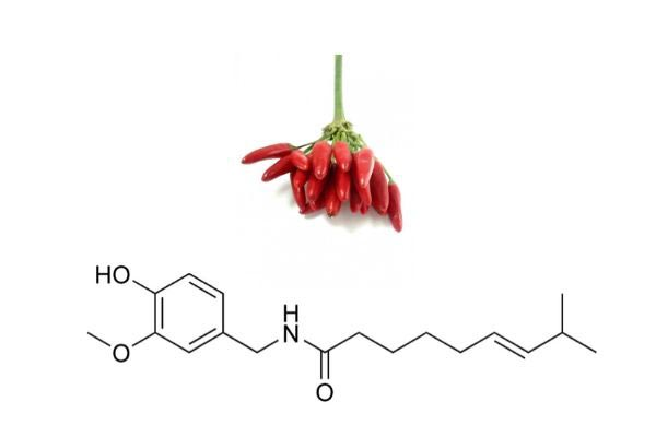 Capsaicin for joint pain